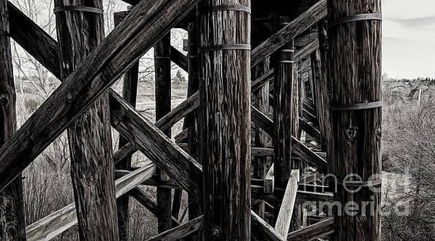 Through A Trestle by Brad Allen Fine Art
