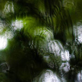 Through Rain Soaked Windows 008 by Noah Weiner