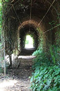 Through the Arch by Danielle Groenen
