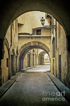 Through The Arches by Evelina Kremsdorf