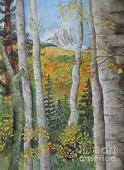 Through the Aspens by Donlyn Arbuthnot