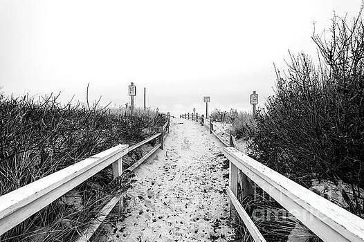 John Rizzuto - Through the Dune at Beach Haven