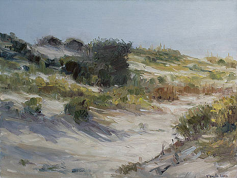 Through the Dunes by Theresa Grillo Laird