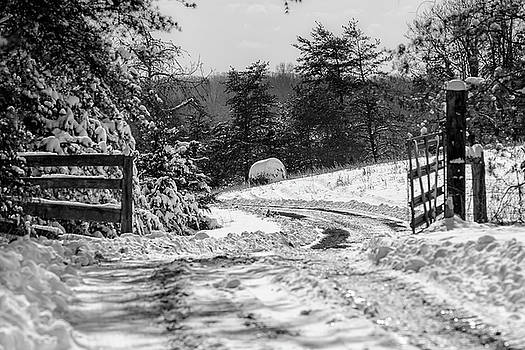 Through The Gate by Tim Wilson