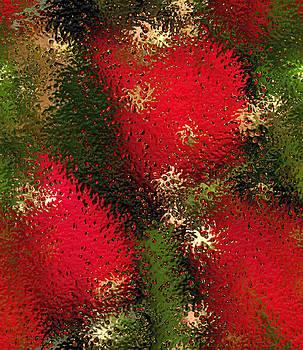 Strawberries Behind  The Glass by Maciek Froncisz