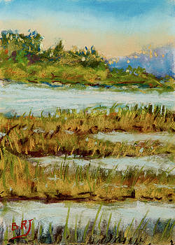 Through the Marsh by Barry Jones