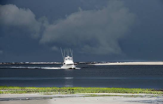 Through The Storm by Phil Mancuso
