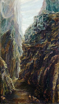 Through the valley by L Stephen Allen