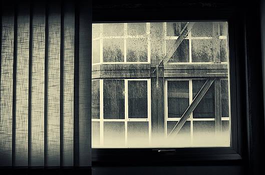 Silvia Ganora - Through the window