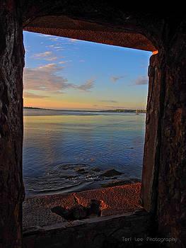 Through the window by Teri Ridlon