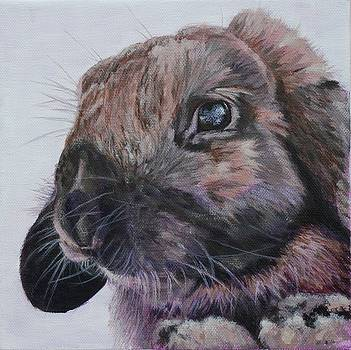 Thumper by Wendy Whiteside