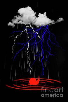 Thunder by Barbara Dudzinska
