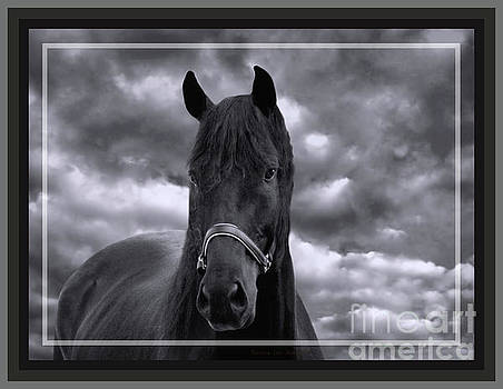 Sandra Huston - Thunder Chasing the Storm in Black and White