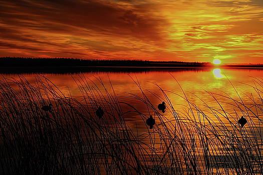 Dale Kauzlaric - Thunder Lake Sunrise