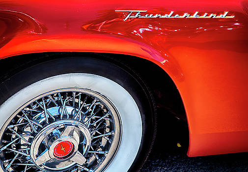 Thunderbird by David Millenheft