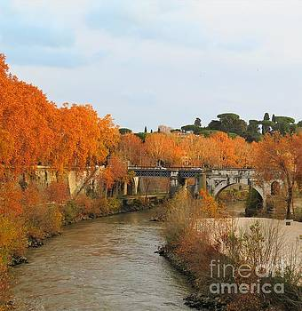 Tiber River in Autumn 2 by Laurie Morgan