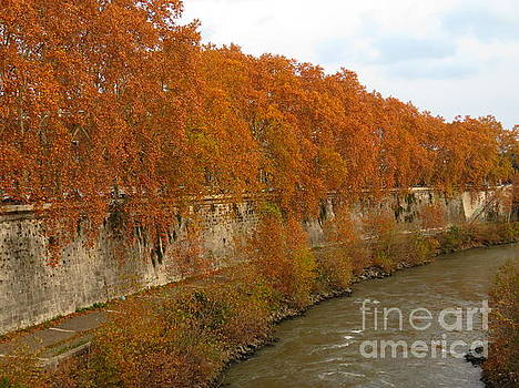 Tiber River in Autumn 3 by Laurie Morgan