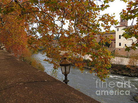 Tiber River in Autumn by Laurie Morgan