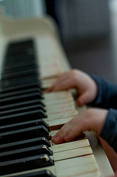 Tickle those ivories by Sharon Wilkinson