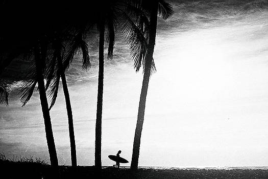 Ticla Palms by Nik West