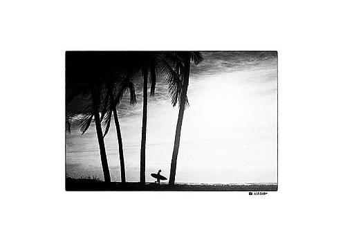 Ticla Palms Signature Tee by Nik West