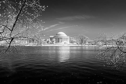 Tidal Basin Jefferson Memorial by Paul Seymour