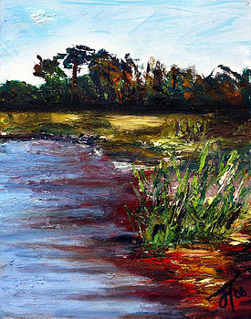 Tidal Creek by Jill Tennison