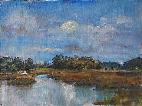 Tidal View by Ann Bailey