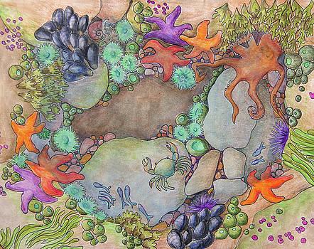 Tide Pool by Tara D Kemp
