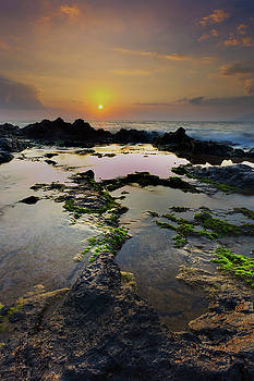 Tide Pools by James Roemmling