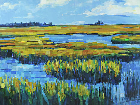 Tidewater Revisited by Michele Norris