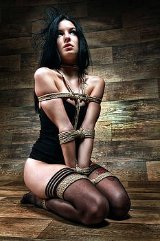 Rod Meier - Tied in Lingerie - Fine Art of Bondage