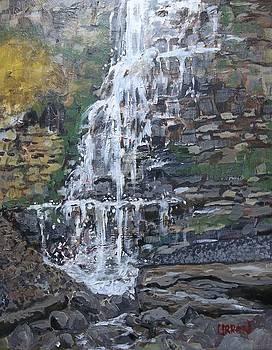 Tiffany Falls by Fred Urron