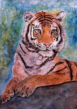 Tiger 001 by Shashikanta Parida