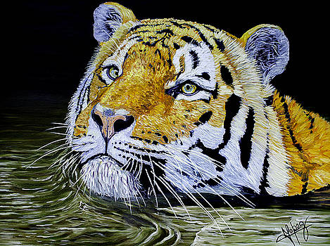 Tiger 24x18x1 inch oil on Gallery canvas by Manuel Lopez