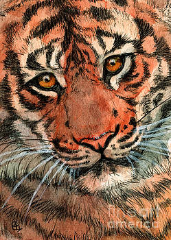 Tiger 884 by Svetlana Ledneva-Schukina