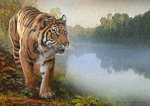 Tiger Along The River by R christopher Vest