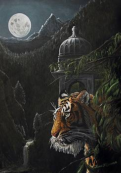Tiger and magic India by Juan Jose Serra