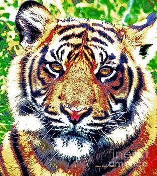 Tiger Art by AZ Creative Visions