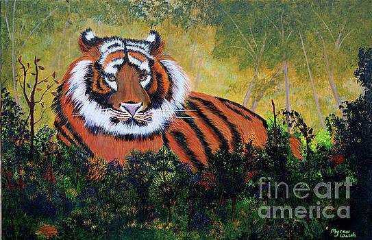 Tiger at Rest by Myrna Walsh