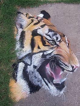 Tiger by Beka Burns