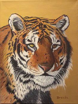 Tiger by Brenda Maas