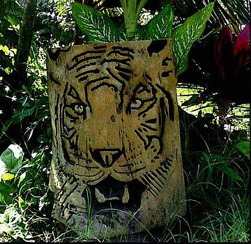 Tiger by Calixto Gonzalez