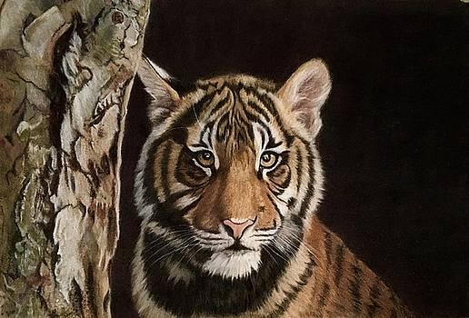Tiger Cub by Michelle McAdams