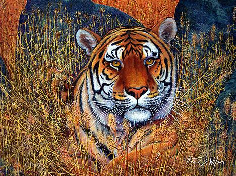 Frank Wilson - Tiger