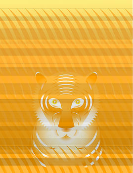Tiger Grass by David Strong
