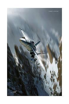 Tiger Hornet by Peter Van Stigt