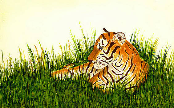 Tiger in Wait by Michael Vigliotti
