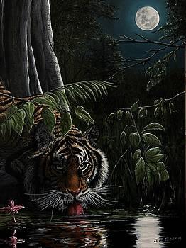 Tiger, king of the night by Juan Jose Serra