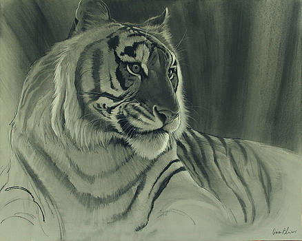 Tiger Light by Aaron Blaise